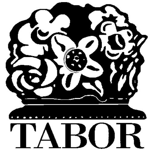 SKD Tabor